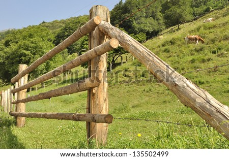 closeup of a wooden fence in a meadow on a hill