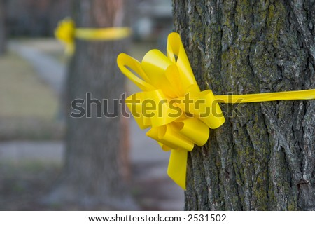 Closeup of a yellow ribbon tied around an oak tree in a residential neighborhood. - stock photo