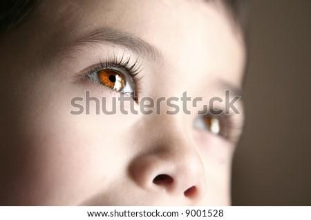 Closeup of beautiful brown eyes belonging to a child. - stock photo