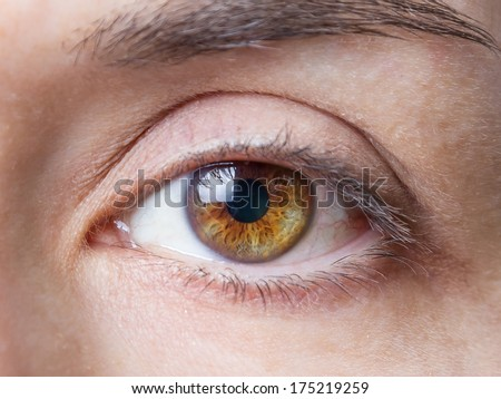 Closeup of beautiful female natural brown eye without makeup - stock photo