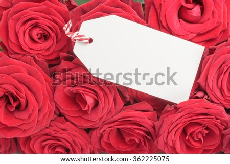 Closeup of blank white tag with red roses  - stock photo
