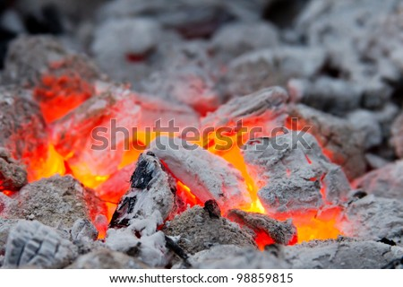 Closeup of blaze with shallow depth of field - stock photo