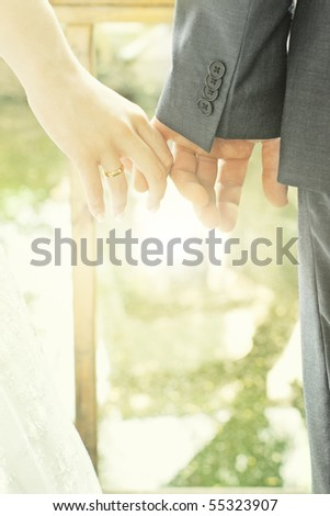 Closeup of bride and groom hands against blurred sunny background - stock photo