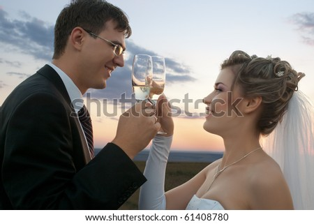 Closeup of bride and groom making a toast at sunset in the field outdoors
