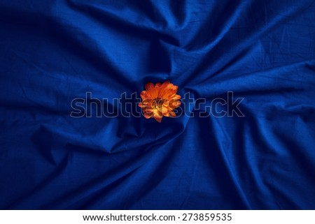Closeup of bright small yellow red flower on folded wrinkled blue violet purple bed sheet - stock photo