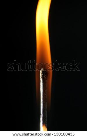 Closeup of burning match, isolated on white background. - stock photo