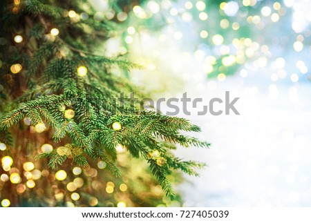 Closeup of Christmas-tree