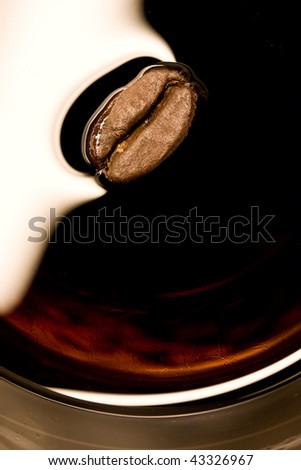 Closeup of coffee bean in a smooth and shiny alcoholic drink - stock photo