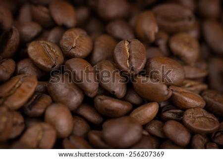 Closeup of coffee beans - stock photo