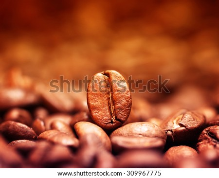 Closeup of coffee beans with focus on one. Filtered image: vintage effect. - stock photo