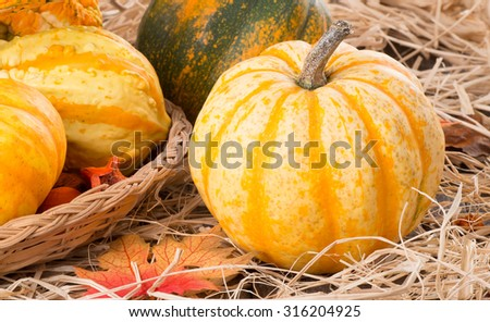 Closeup of colorful autumn gourds on straw