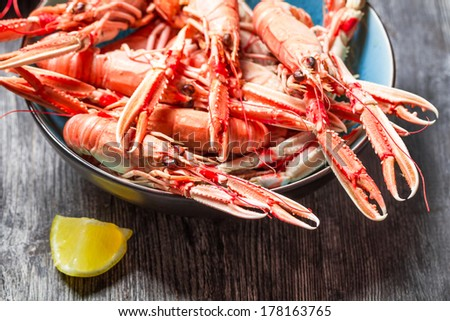 Closeup of cooked scampi with lemon - stock photo