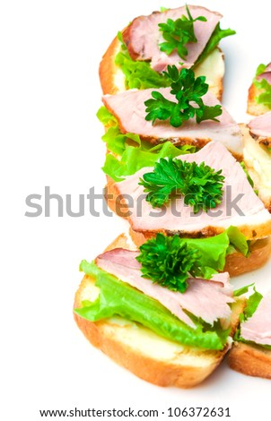 Closeup of delicious ham and salad canapes sandwiches with parsley lying on a white plate. - stock photo