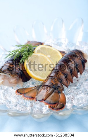 Closeup of delicious raw lobster tails on ice ready for cooking - stock photo