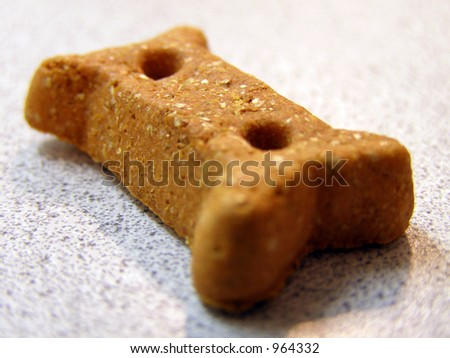 Closeup of dog cookie. - stock photo