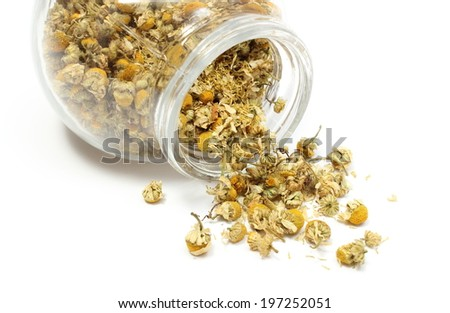 Closeup of dried chamomile, dried chamomile pouring out of glass jar. Isolated on white background