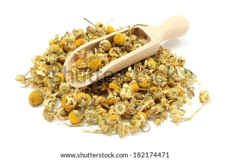 Closeup of dried chamomile, heap of dried chamomile on wooden spoon. Isolated on white background - stock photo