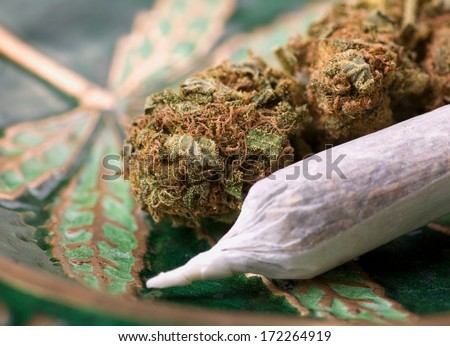 closeup of dried marijuana and handmade cigarette in ashtray - stock photo