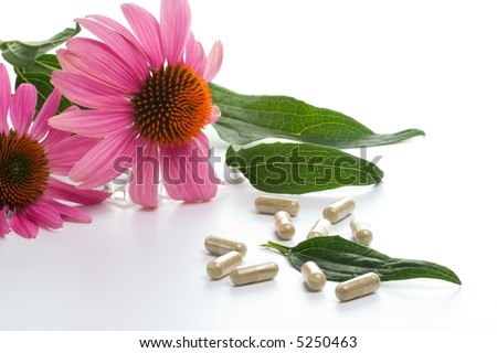 Closeup of Echinacea extract pills and fresh Echinacea flowers and leaves best suited for alternative medicine ads - stock photo