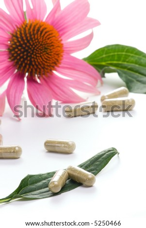 Closeup of Echinacea extract pills and fresh Echinacea flowers and leaves best suited for alternative medicine ads. Flower out of focus. - stock photo