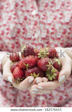 Closeup of female hands holding freshly picked strawberries with copy space - stock photo