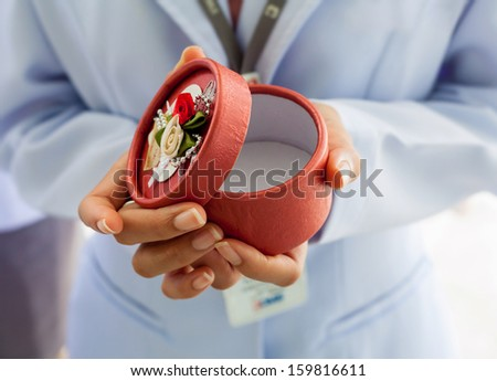 Closeup of Female hands holding gift box. - stock photo