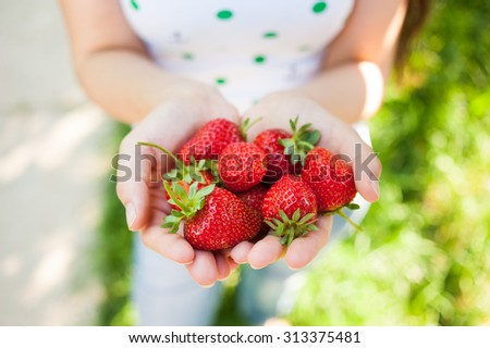 Closeup of female hands holding handful of strawberries outdoors in summer - stock photo