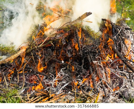 Closeup of flames and branches in a burn pile