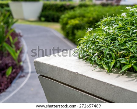 Closeup of flowerbed with modern garden background in summer - stock photo