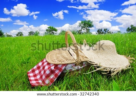 Closeup of Food Basket with Straw Hat on meadow