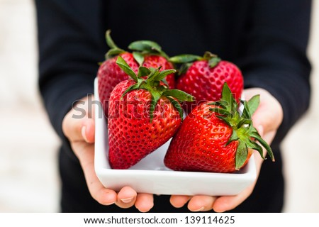 Closeup of four large fresh strawberries in white dish being held in hands of young child