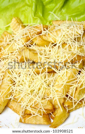 closeup of french fries with cheese