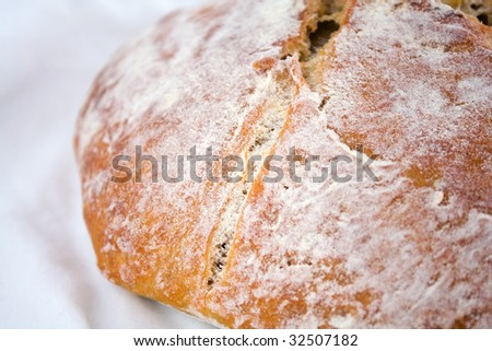 Closeup of fresh-baked whole-wheat bread on a white cotton cloth.
