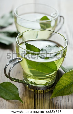 closeup of fresh green tea, focus on the tea leaves in the water - stock photo