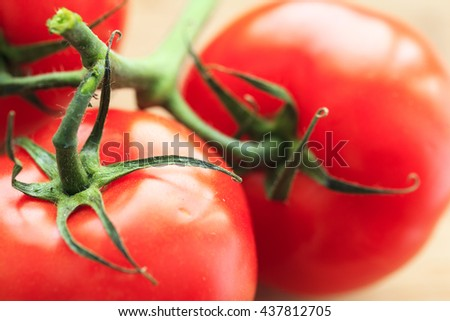 Closeup of fresh  tomatoes on the vine isolated on neutral colored background - stock photo