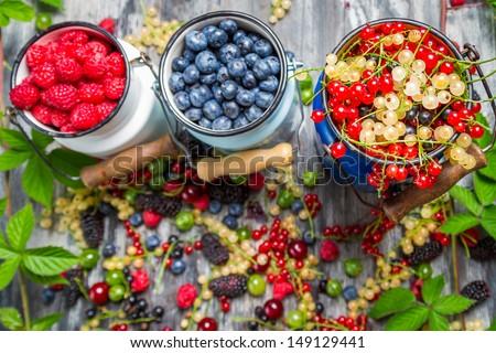 Closeup of fresh wild berry fuits - stock photo