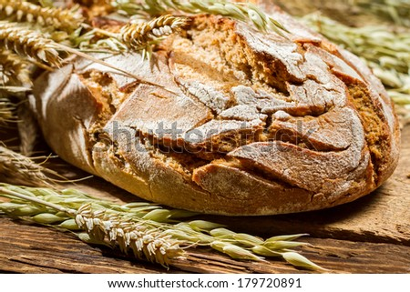 Closeup of freshly baked country bread