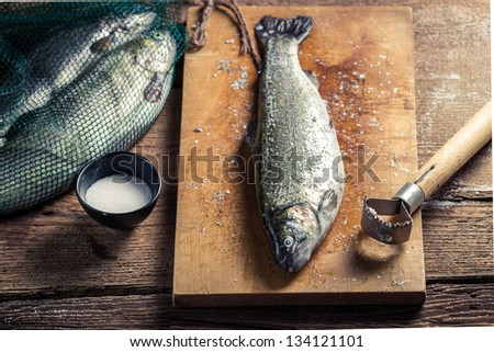 Closeup of freshly caught fish for dinner - stock photo