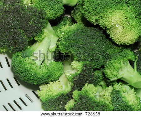 Closeup of freshly washed broccoli florets in a white colander.