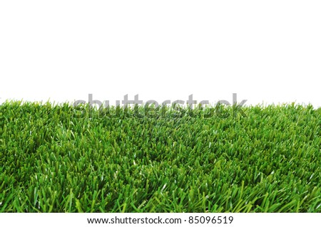 closeup of grass on a white background - stock photo