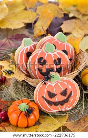 Closeup of Halloween decor pumpkin cookies and assorted pumpkins. Popular American event party decorative dessert idea. - stock photo