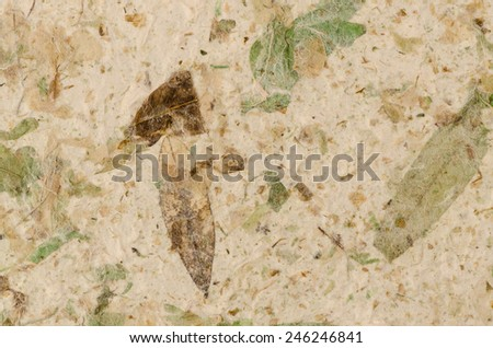 Closeup of handmade paper texture background. - stock photo