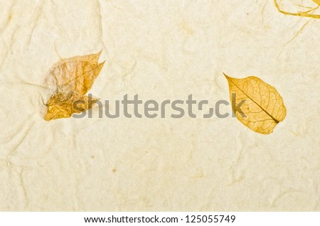 Closeup of handmade paper texture background with leaf