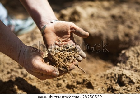 Closeup of hands holding recently tilled dirt in the garden prior to planting. - stock photo