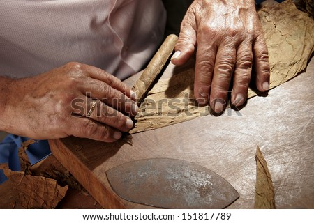 closeup of hands making cigar