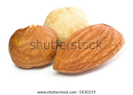 Closeup of hazel and almond nuts kernels isolated on white background. - stock photo