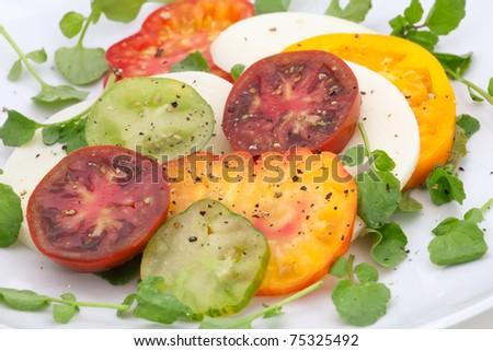 Closeup of Heirloom Tomato and Mozzarella Cheese Salad with watercress. - stock photo
