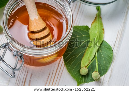 Closeup of honey dipper and lime leaves - stock photo