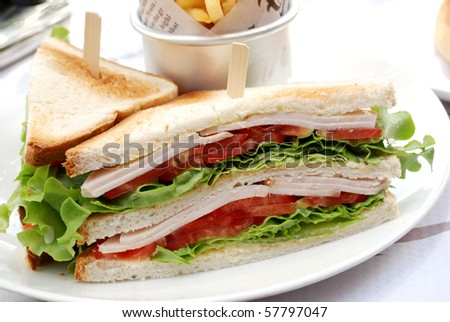 closeup of isolated sandwich in a white plate