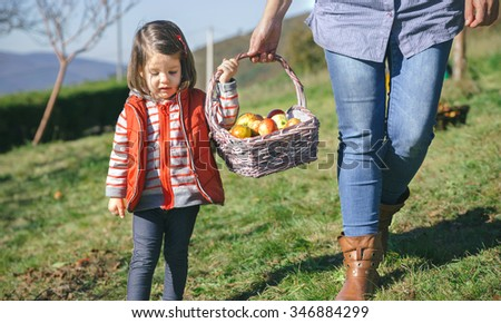 Closeup of little girl woman carrying a wicker basket with fresh organic apples. Healthy food and harvest time concept. - stock photo